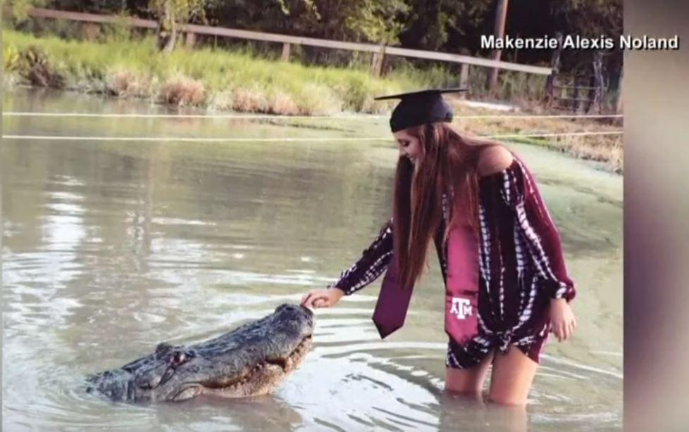 This Texas A&M Grad Took Her Photos With A 1,000lbs Alligator