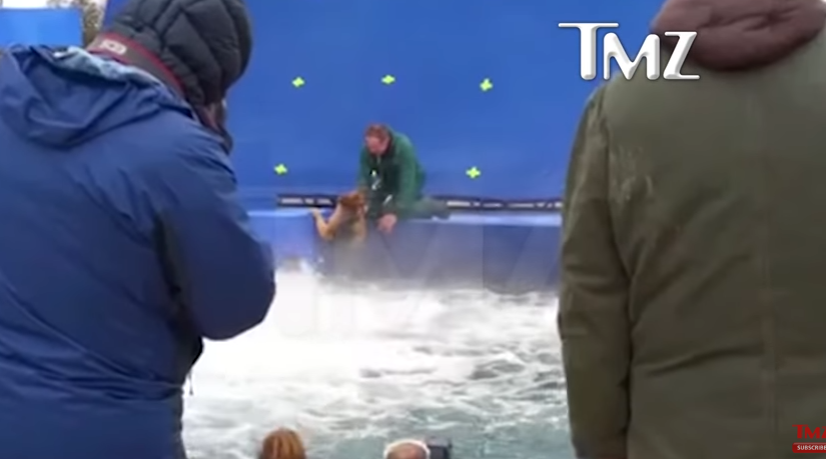 'A Dog's Purpose' under fire… WATCH HERE