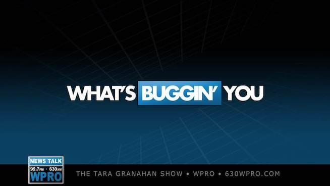 "Tara Granahan's ""What's Buggin' You"" – The Mayor Saves Valentine's Day!"