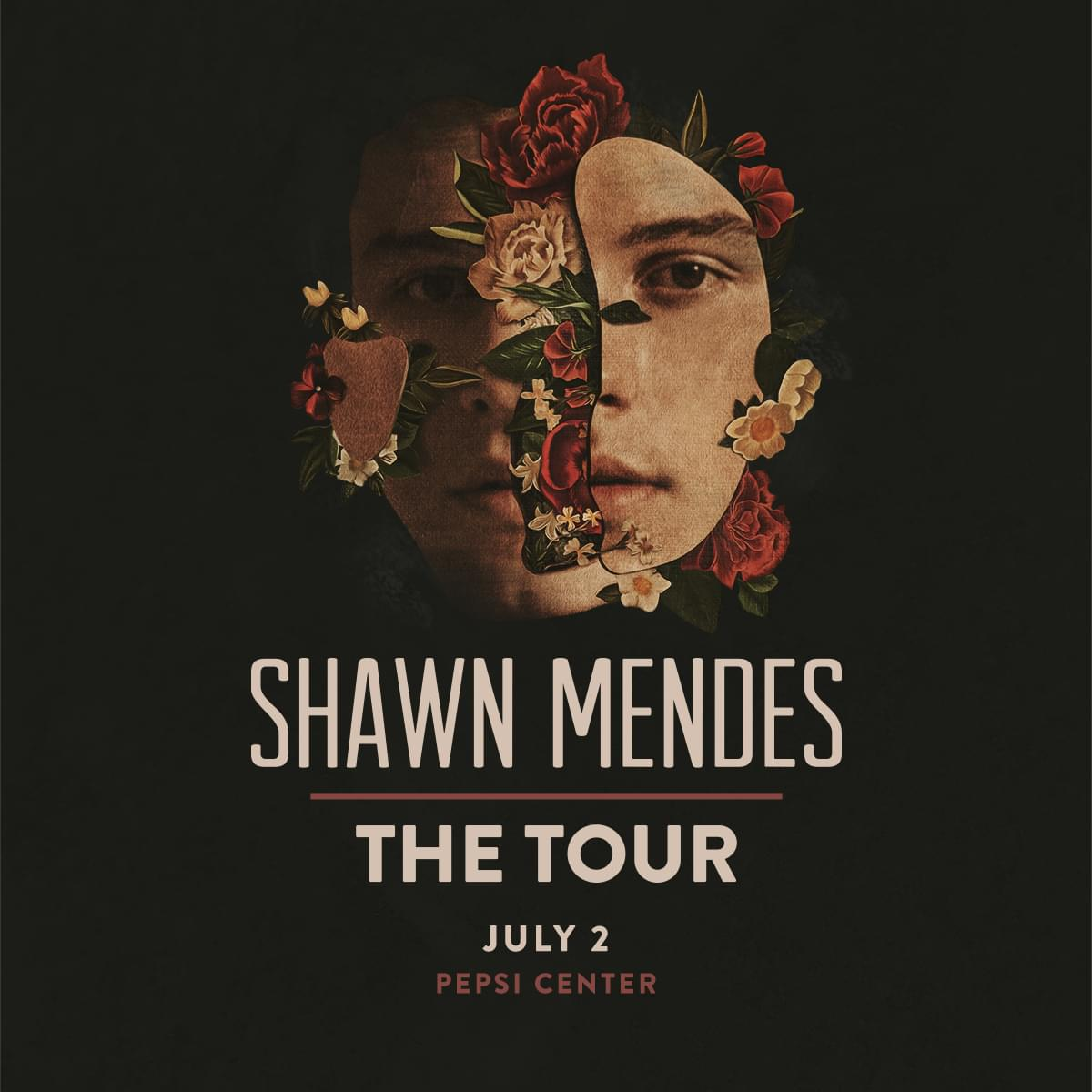 Shawn Mendes | July 2, 2019 | Pepsi Center
