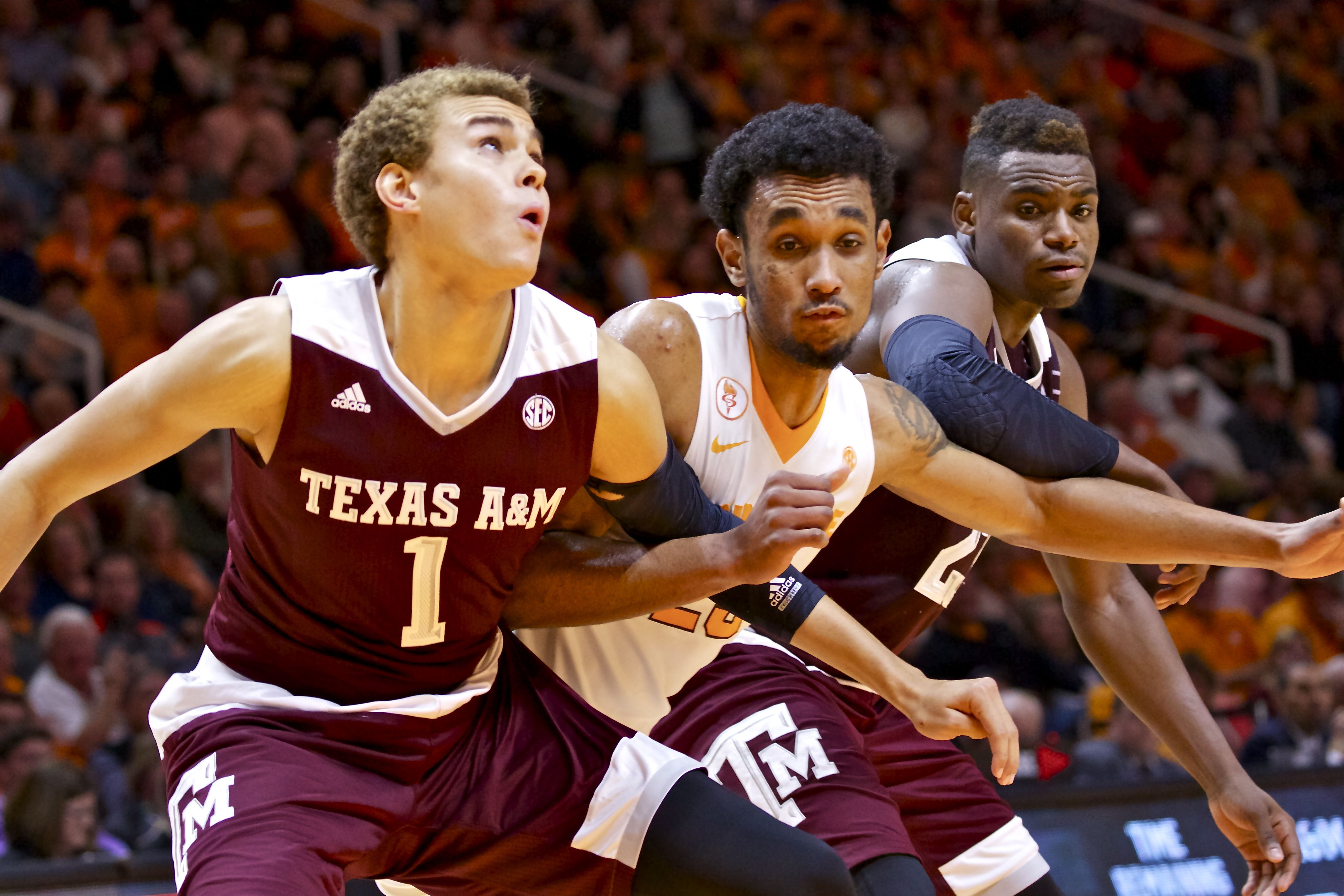 Photo Gallery: Tennessee vs. Texas A&M Basketball 01-09-16