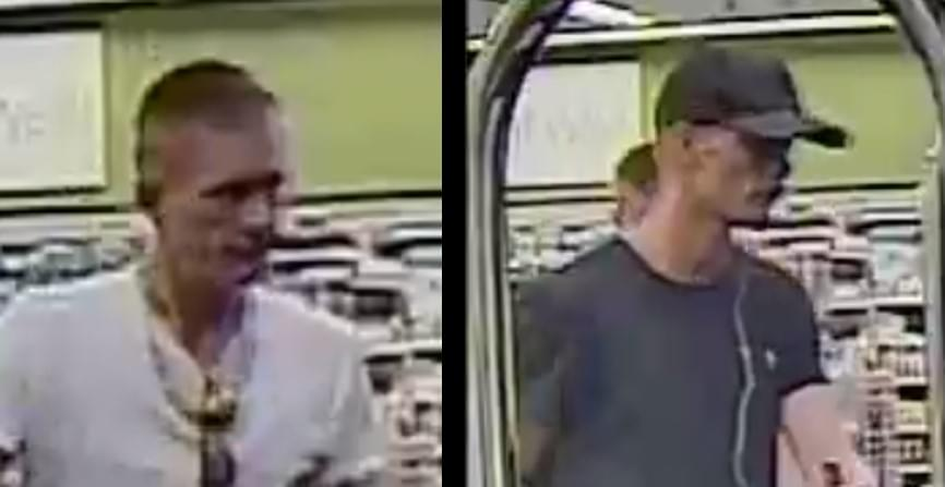 Police Searching for Suspects in Car Theft