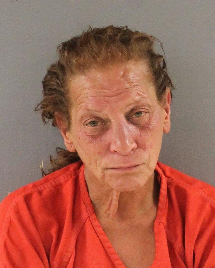 Knoxville Woman Charged with Assaulting 4 Minors