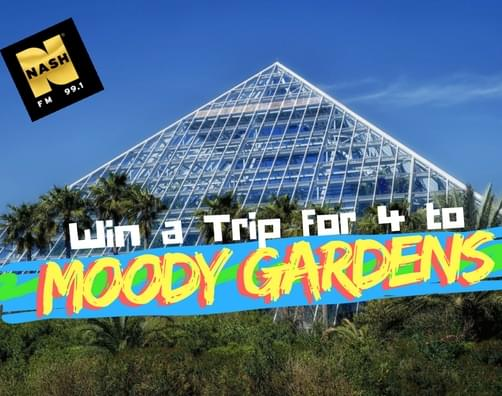 Win A Family 4Pack To Moody Gardens