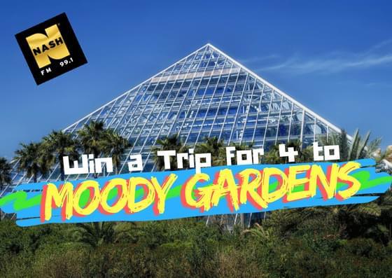 Win a Family Four Pack to Moody Gardens!
