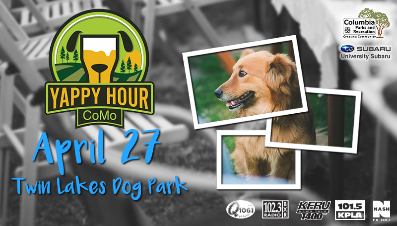 Yappy Hour 2019