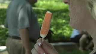 Happy National Creamsicle Day!