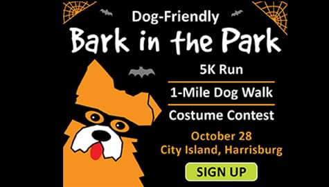 Bark in the Park | Pennsylvania Veterinary Foundation