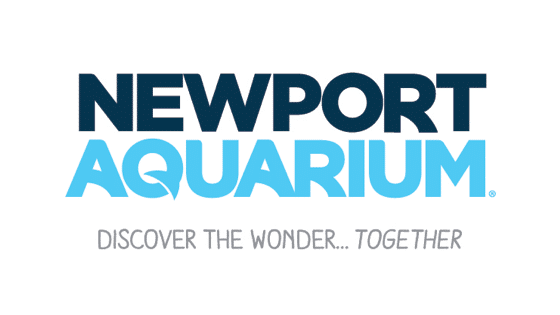 Talk Like a Pirate, meet a Mermaid at the Newport Aqaurium!
