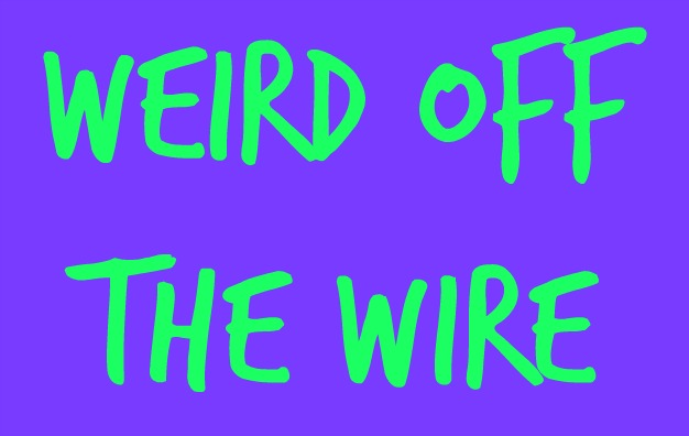 Off The Wire | Weird Off The Wire Watching The Eclipse With Sasquatch Wwli Fm