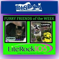 Turbo and Casper – FURRY FRIENDS of the WEEK! (10/8/18)