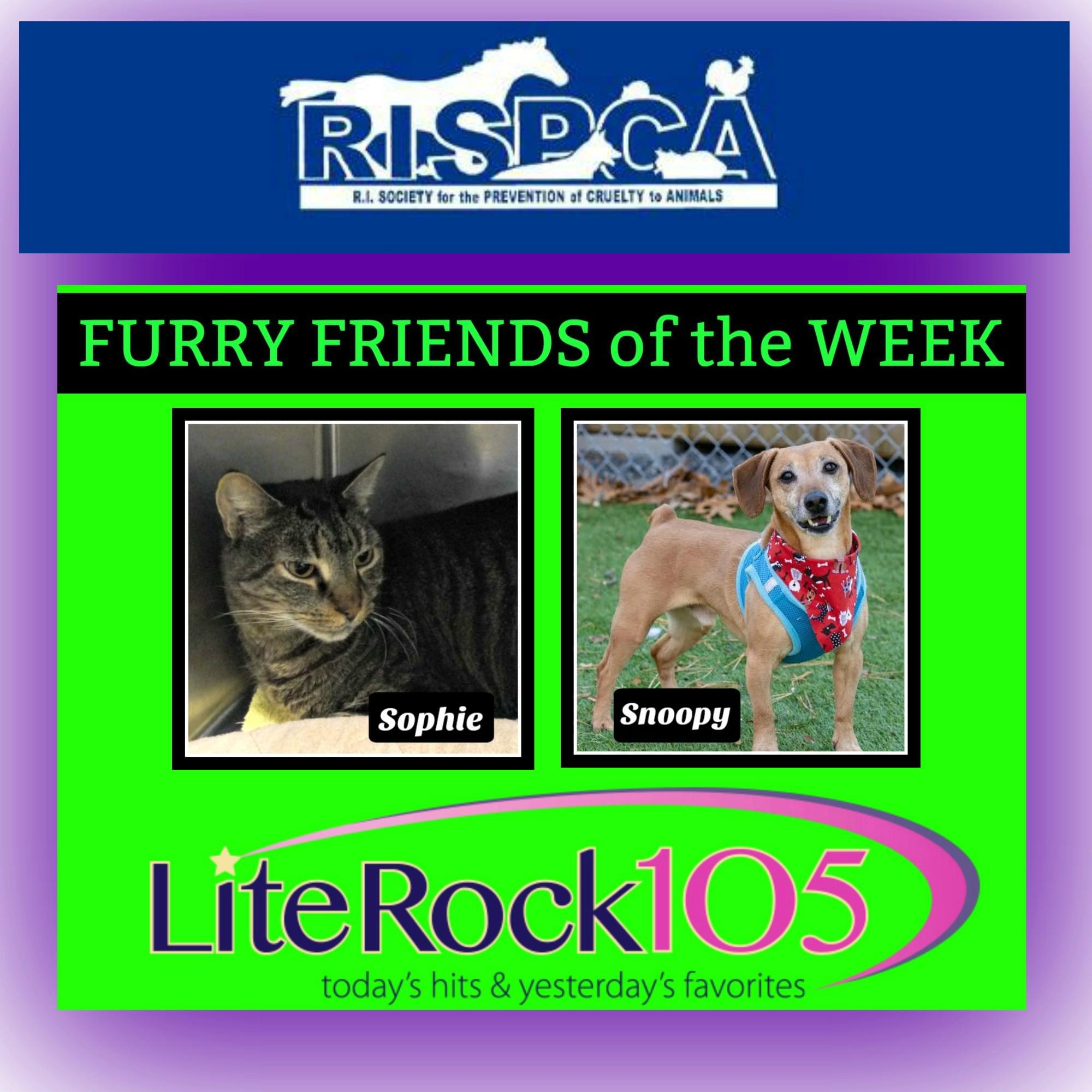 Meet Snoopy & Sophie – our latest FURRY FRIENDS of the WEEK (2/11/19)