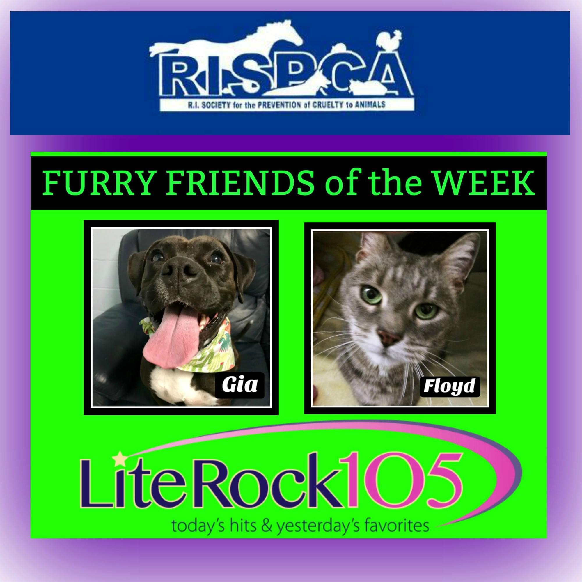 Meet Floyd and Gia! Our FURRY FRIENDS of the WEEK! (03/04/19)