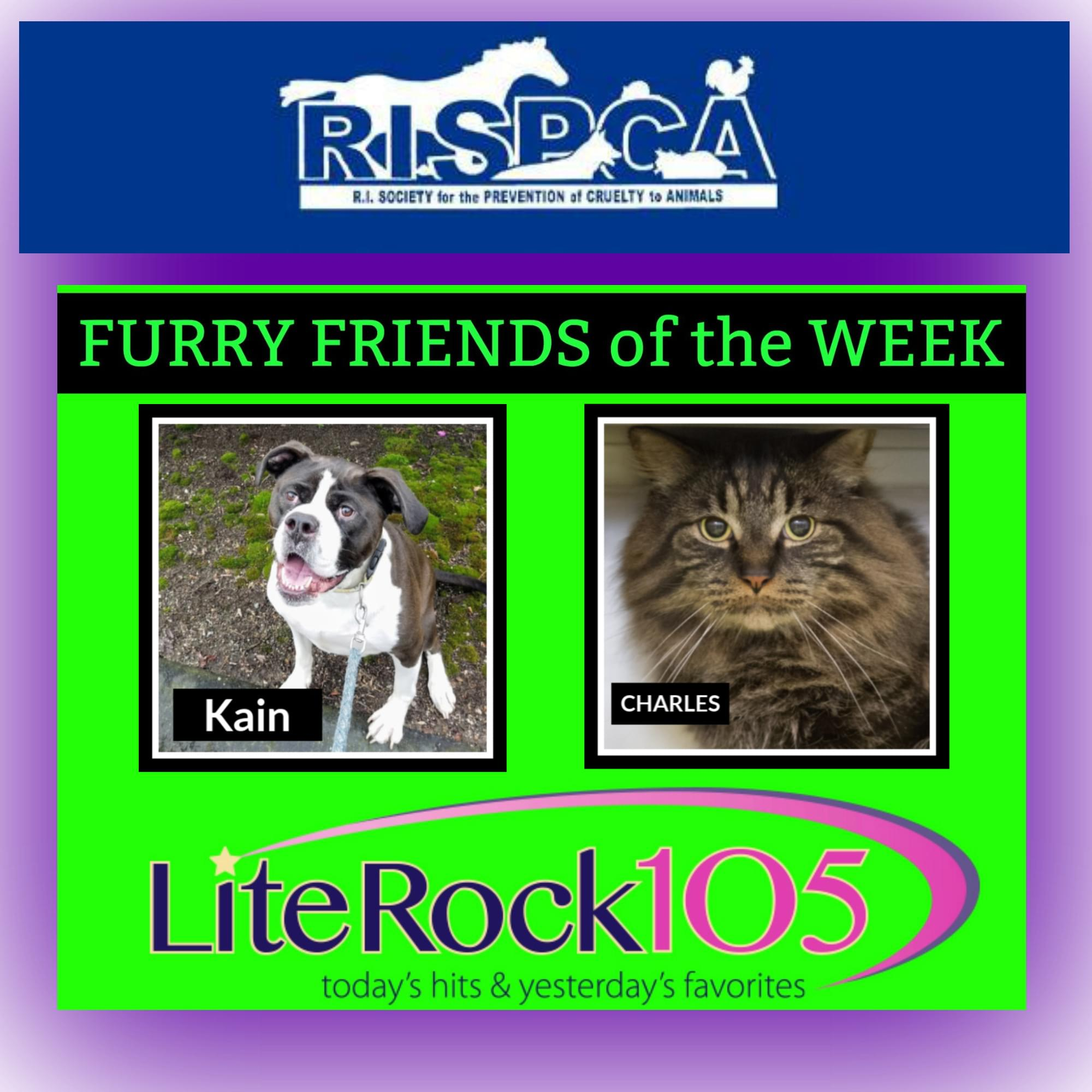 Meet Charles and Kain, this week's FURRY FRIENDS of the WEEK (5/13/19)