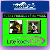 Meet OREO and TWO-FACE, our FURRY FRIENDS of the WEEK! (6/3/19)