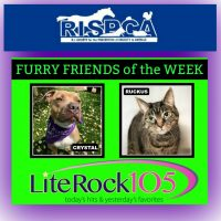 Meet Crystal and Ruckus! Our FURRY FRIENDS of the WEEK! (7/15/10)