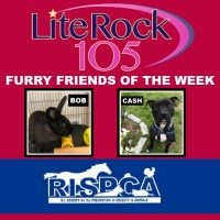 Meet Bob and Cash, our FURRY FRIENDS of the WEEK!