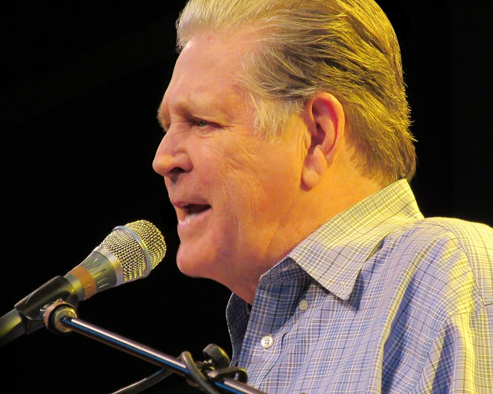 BRIAN WILSON PET SOUNDS