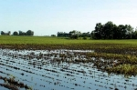 Threat of Planting Delays Comes as Cold Wet Weather Continues