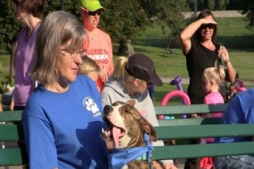 Fido Scurry and Dog Swim Registration Open
