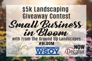 Small Business In Bloom with From the Ground Up Landscapes