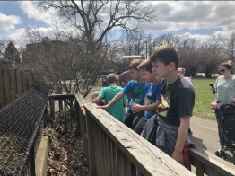 PHOTOS: Scovill Zoo Opening Day