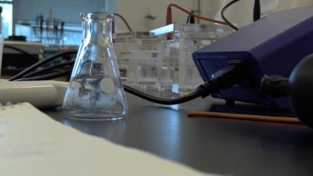WATCH: Chemistry Camp