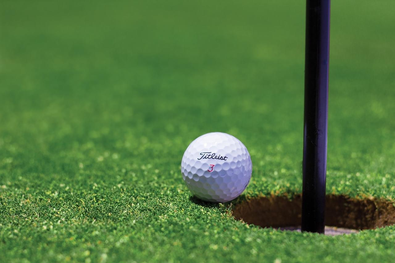 Eagle Helps Golfer with Hole-In-One