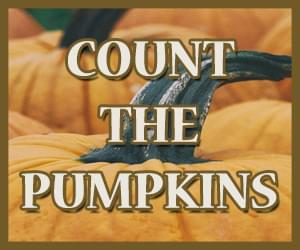 Count the Pumpkins 2018 - 300